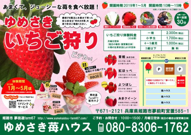 2019ゆめさき苺狩り